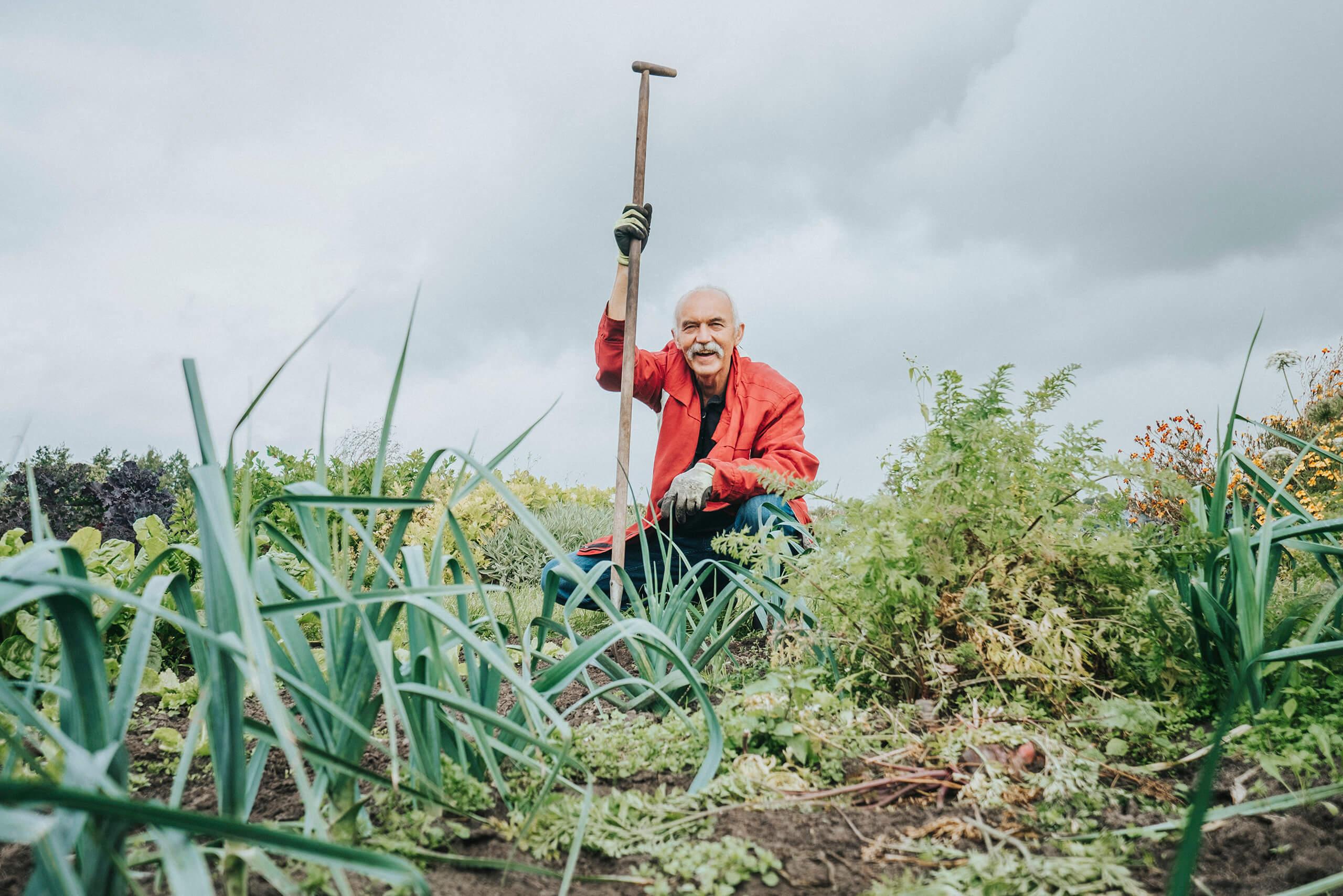 tuinieren groentes biologisch gezond eten